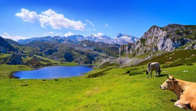 Lago Ercina en Covadonga, visita imprescindible en la ruta de 7 días por Asturias