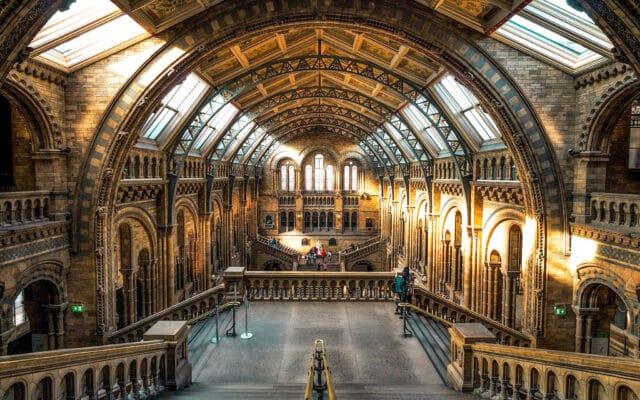 museo historia natural de Londres